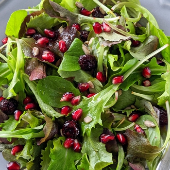 Sunflower Seed Salad with Cranberries